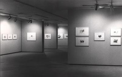 Vista parcial de la exposición Julius Bissier
