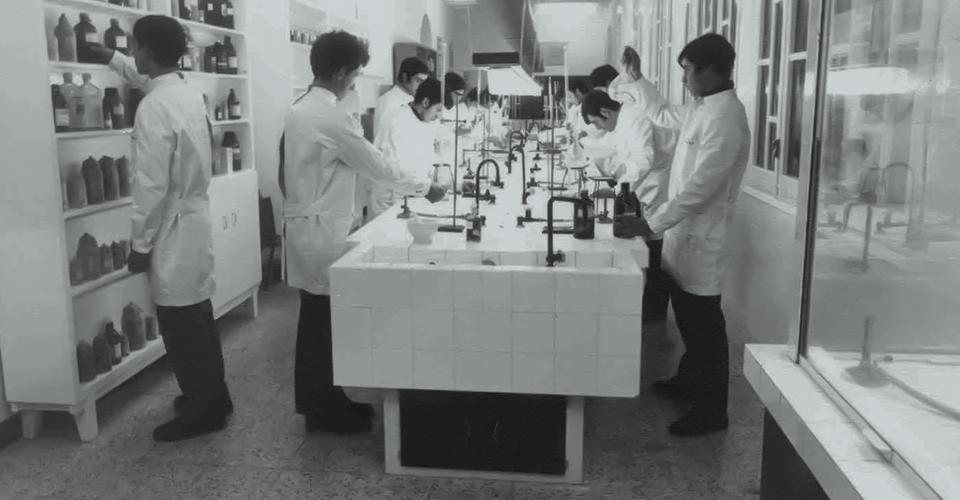 Chemistry Laboratory. Social work