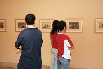 Vista parcial. Exposición Tauromaquia, Goya y Picasso