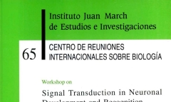 https://digital.march.es/fedora/objects/fjm-pub:1250/datastreams/TN_S/content
