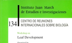 https://digital.march.es/fedora/objects/fjm-pub:1320/datastreams/TN_S/content