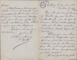 Cartas de Salomé Núñez y Topete a Carlos Fernández Shaw.