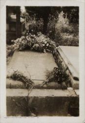 Fotografías de la lápida de Carlos Fernández Shaw en el Cementerio de la Almudena. Paseo de San Pedro.