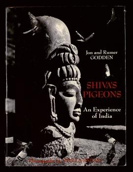 Shiva's pigeons