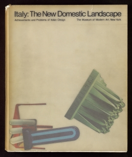 Italy, the new domestic landscape