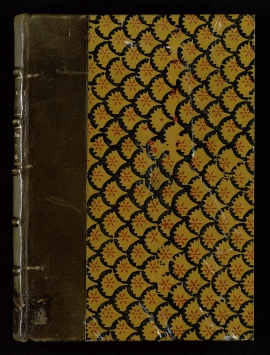 Retratos de la familia Téllez-Girón, novenos Duques de Osuna