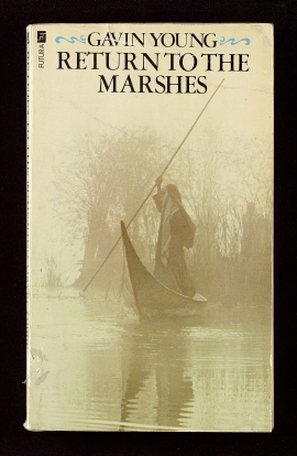 Return to the Marshes